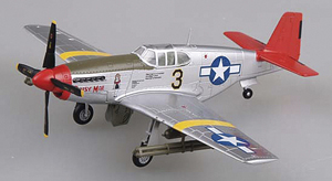 P-51 Mustang Scale Model Plane